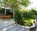 Красивый двор с виноградной аркой