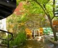 Анапа Гостевой дом «Зеленый дворик»