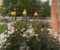 Территория санатория Анапа розы